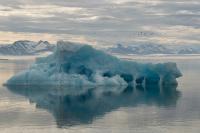 Sommermorgen på Svalbard