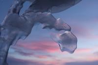 """Hederlig omtale: """"Flyvende drage"""""""