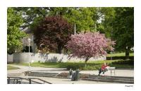 På en benk i parken