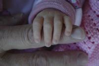 Antatt - En hånd å holde